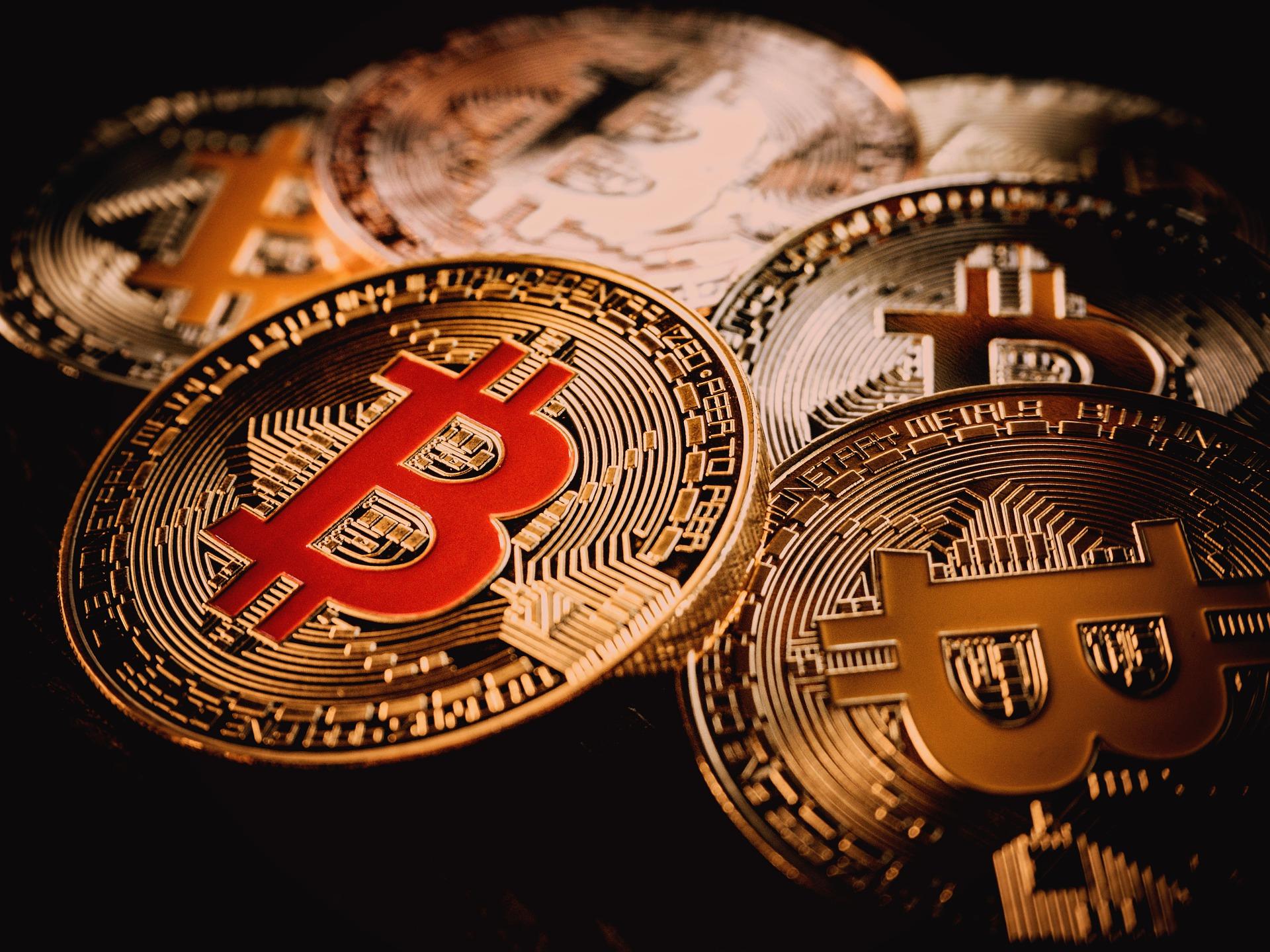 Die Mehrheit investiert in Bitcoin